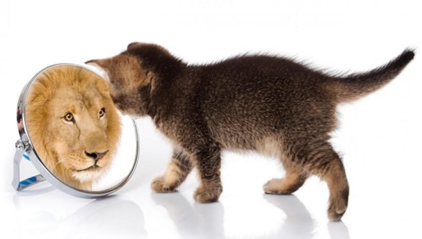O Teste do Espelho!